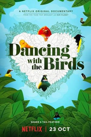 Kuşlarla Dans